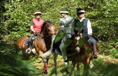 Horse riding near Dover in Kent